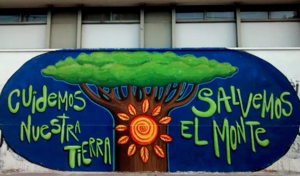 Ubicación: Montevideo y 11 / Fotografía Leandro Romero